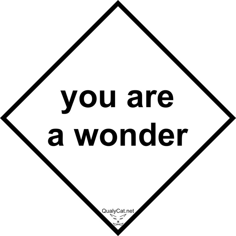 you are a wonder