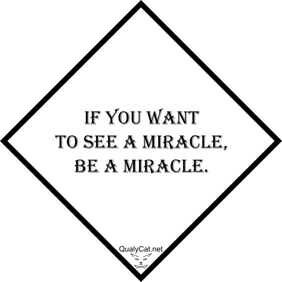 [:en]if you want to see a miracle, be a miracle[:]